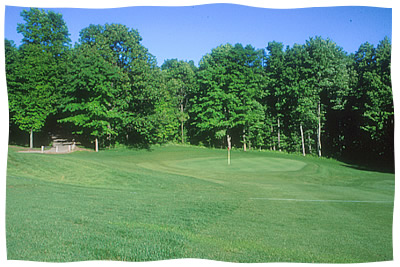 The Rose Golf Course